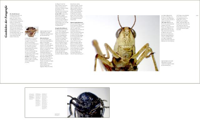 Bildband Insekten